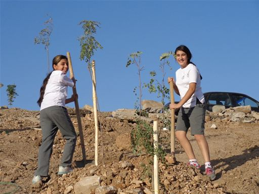 Tree Planting at ISC-Suleimaniah